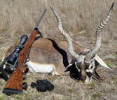 Kilimanjaro Custom Rifles Trophy of Blackbuck