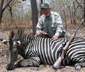 african safari hunting rifle zebra